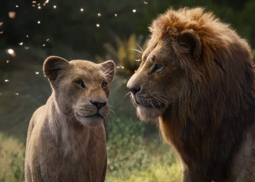 Der KÖnig der Löwen Kino Review szenenbild