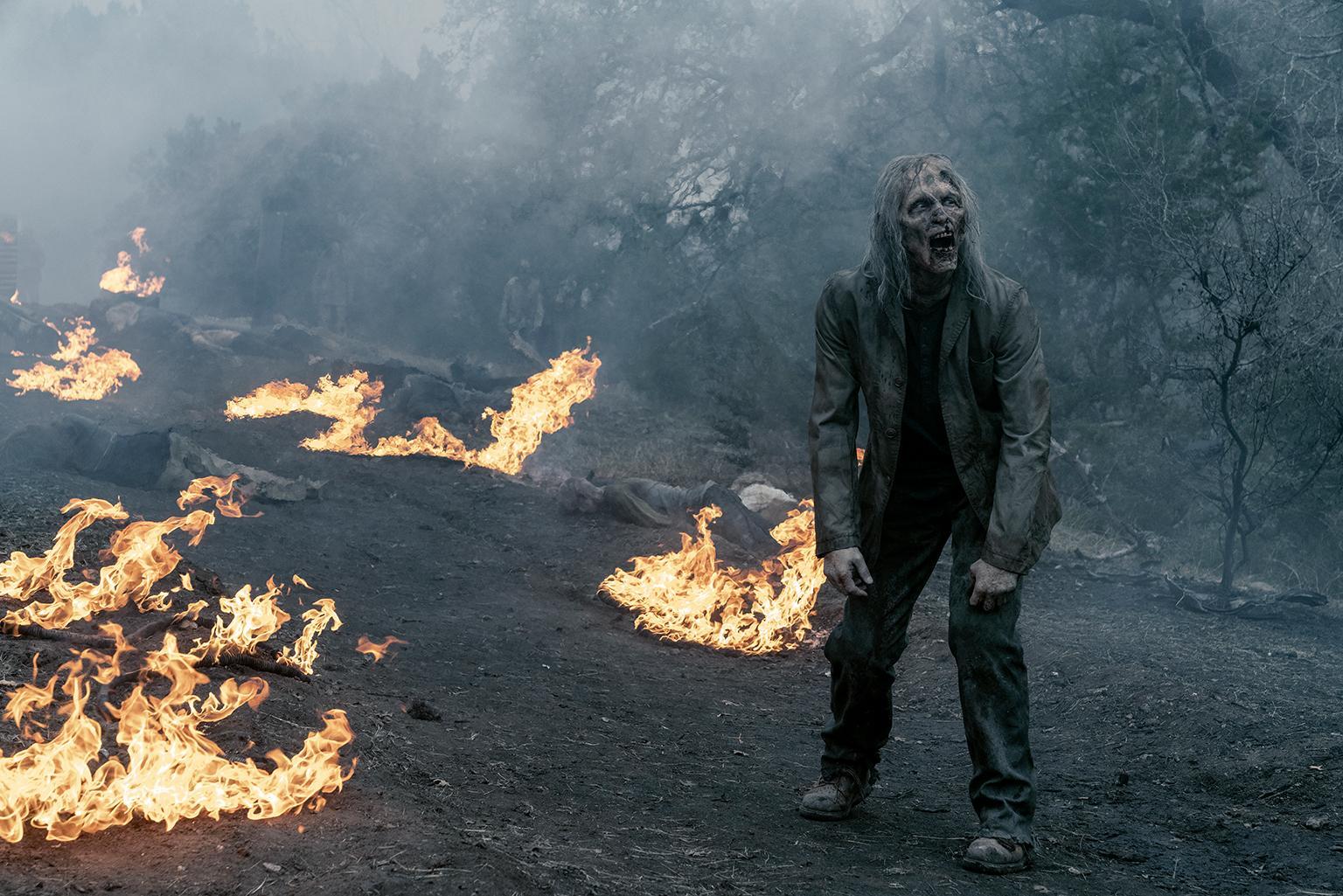 Amazon Prime The Walking Dead Staffel 5