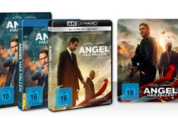 Angel has fallen Artikelbild