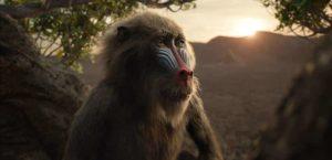 König der Löwen Real Review Szenenbild003