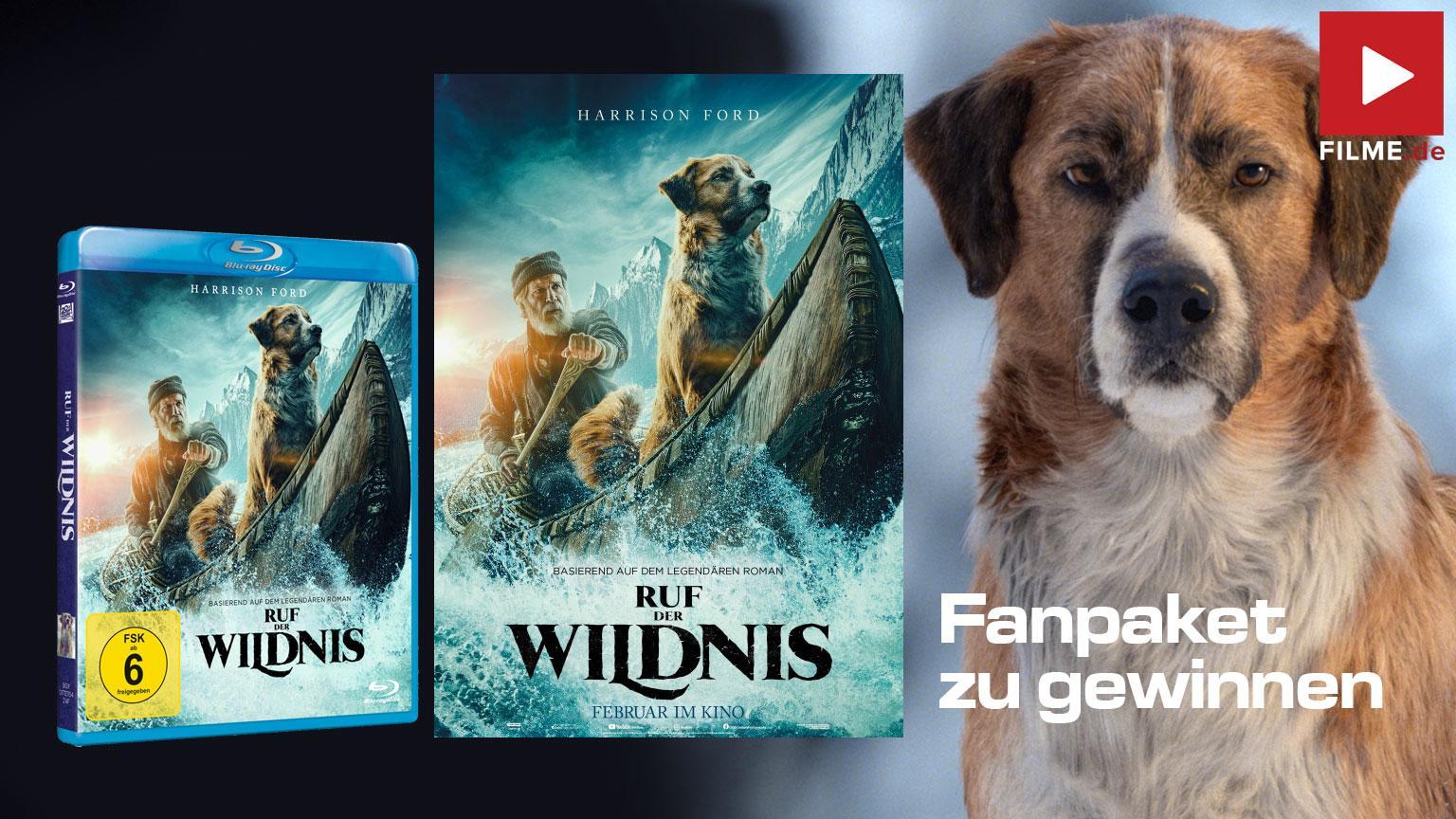 Ruf der Wildnis Film 2020 Gewinnspiel gewinnen Artikelbild shop kaufen